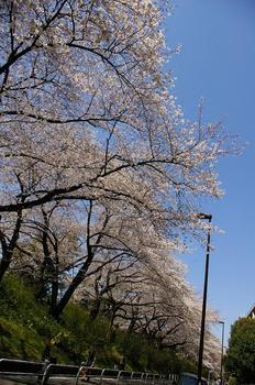 20120408_四谷.jpg
